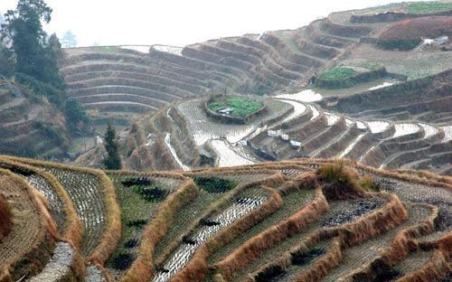 My Longji Terraced Fields Trekking Trip