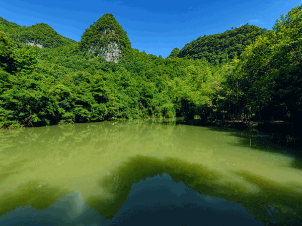 Ten Most Beautiful Forests in China - Libo Karst Forest