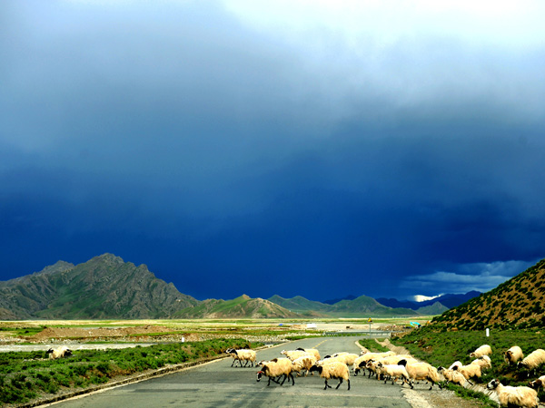 Top 10 Most Beautiful Highways in China - Qinghai-Tibet Highway
