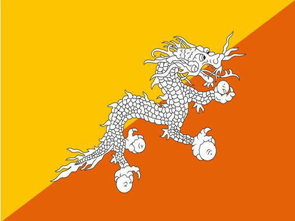 dragon on flags