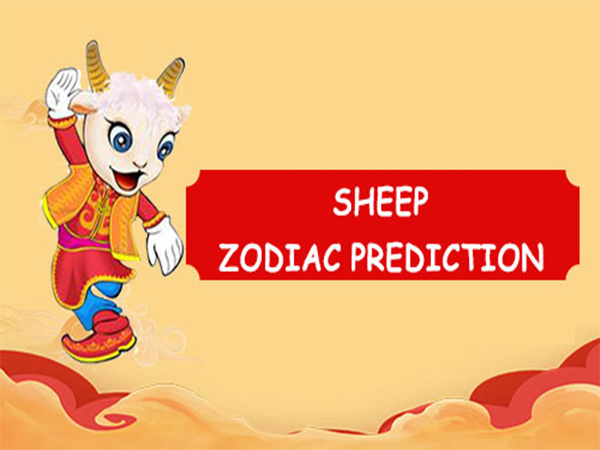 The Year of Sheep 2018: Prediction, Personality & Love