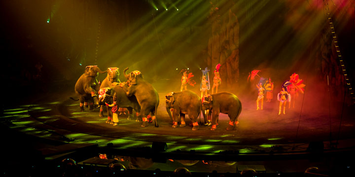 things to do at night in guangzhou watch chimelong international circus