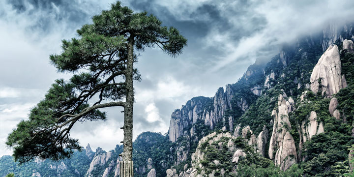 Mount Huangshan-plan a trip to China from Norway