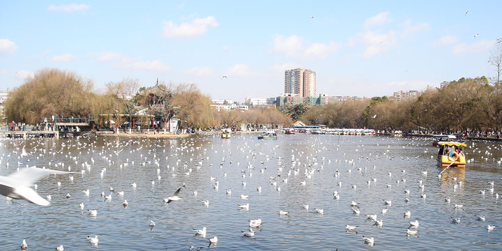 Kunming City View-Green Lake Park