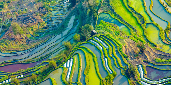 Hani Rice Terrace-plan a trip to China from Czech Republic