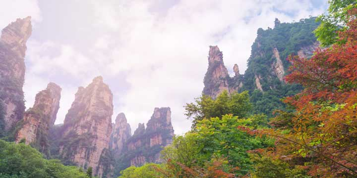 Zhangjiajie National Forest Park-5 days Guangzhou and Zhangjiajie tour