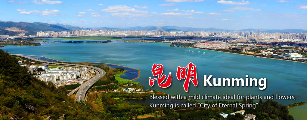 Kunming Travel Guide