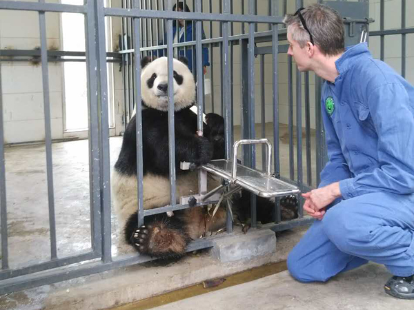 12 Days China Panda Adventure Family Tour