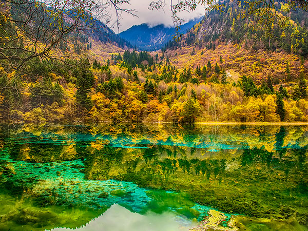 15 Days Jiuzhaigou and Chengdu Wonderland Tour