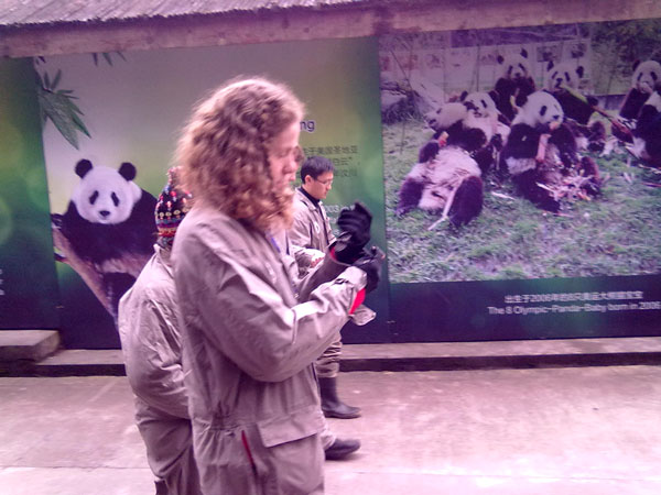 Chengdu Giant Panda Volunteer Tour