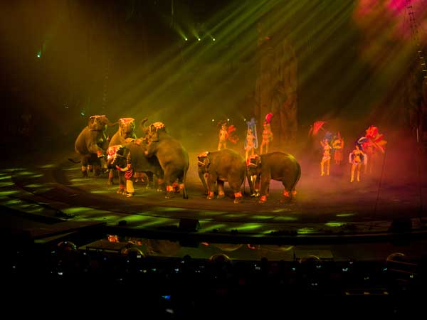 Watch Chimelong International Circus