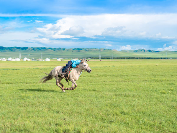6 Days Amazing Inner Mongolia Tour