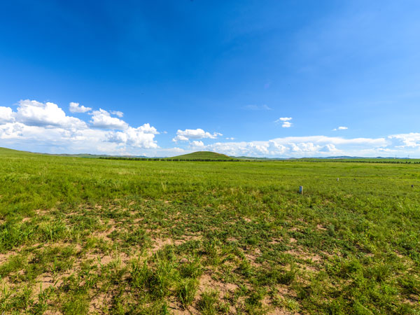 5 Days Inner Mongolia Best Grassland Tour