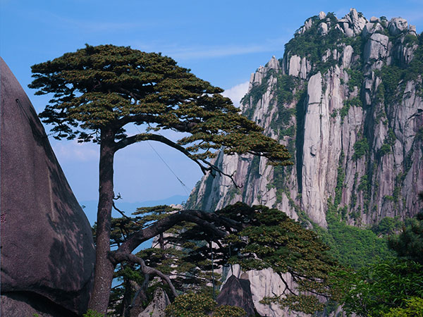 10 Days Scenic Tour to Zhangjiajie & Mt. Huangshan