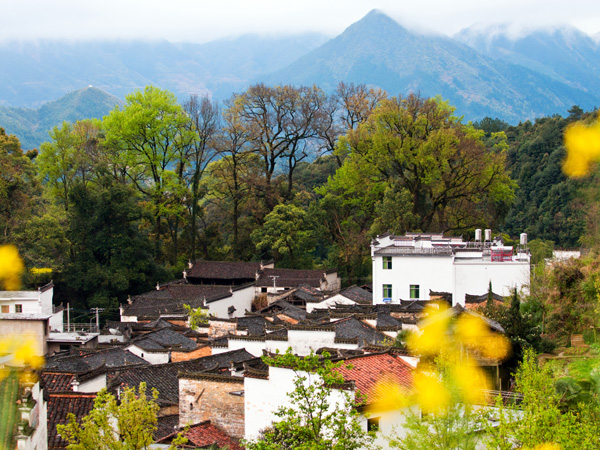 Best Places to Visit in China in March-Wuyuan/ Jiangxi Province