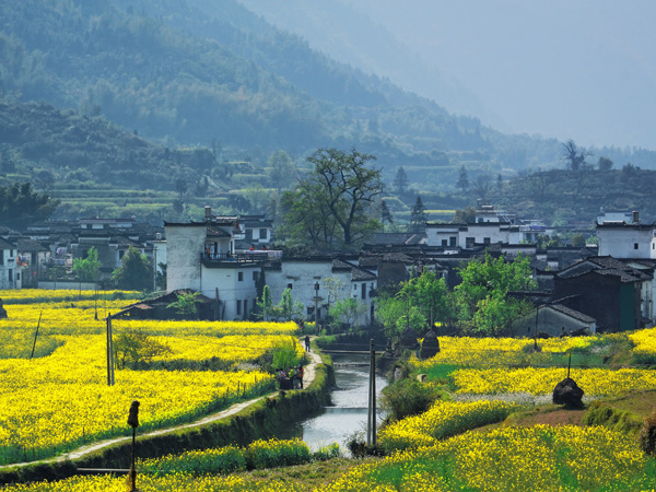 Wuyuan China  city photo : Wuyuan Scenic Area, The Most Beautiful Countryside in China