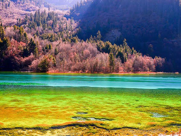 Jiuzhaigou-Jiuzhaigou or Zhangjiajie, which is better to visit