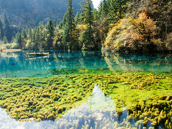 Long Lake in Jiuzhaigou Valley