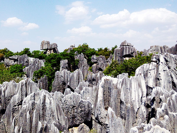 4 Days Kunming and Stone Forest Tour