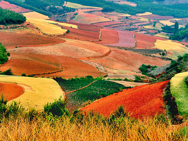 6 Days Dongchuan Red Land Tour