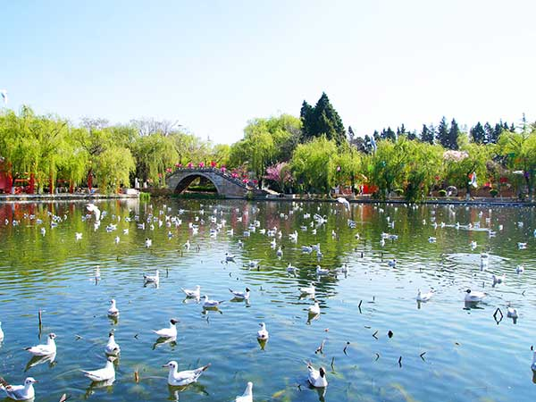 Green Lake Kunming