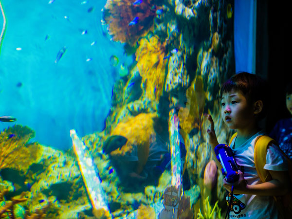Shanghai Changfeng Ocean World