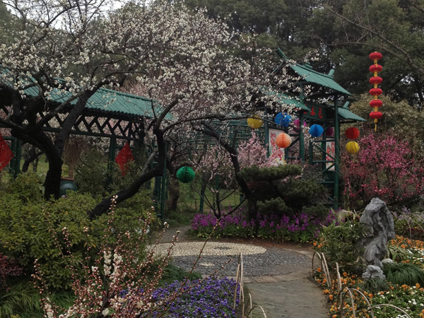 Best Places to Visit in China in February-Plum Garden